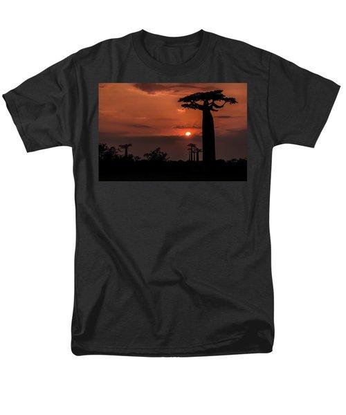 Baobab Sunrise Men's T-Shirt  (Regular Fit) by Linda Villers