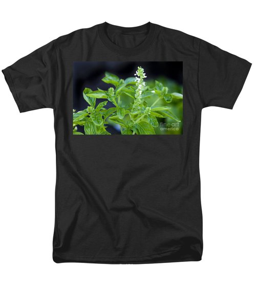 Men's T-Shirt  (Regular Fit) featuring the photograph Basil With White Flowers Ready For Culinary Use by David Millenheft