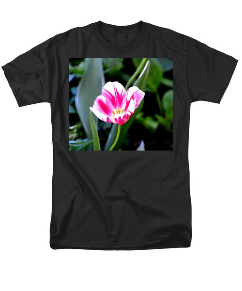 Beauty Men's T-Shirt  (Regular Fit) by Tara Potts