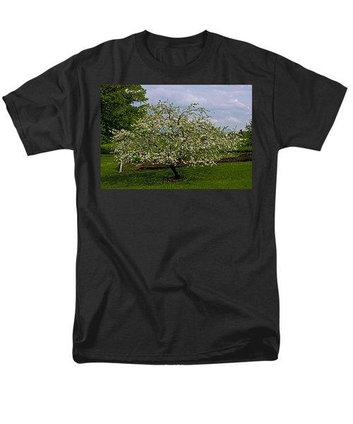Men's T-Shirt  (Regular Fit) featuring the painting Birth Of Apples by John Haldane