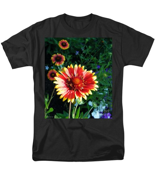 Blanket Flower Men's T-Shirt  (Regular Fit) by Lizi Beard-Ward
