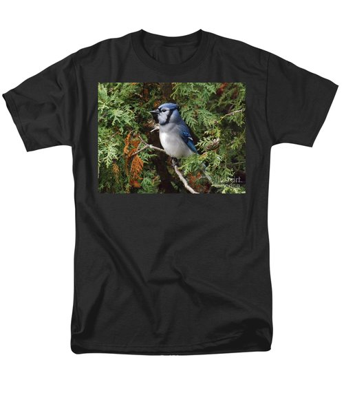 Men's T-Shirt  (Regular Fit) featuring the photograph Blue Jay In Cedar Tree 2 by Brenda Brown