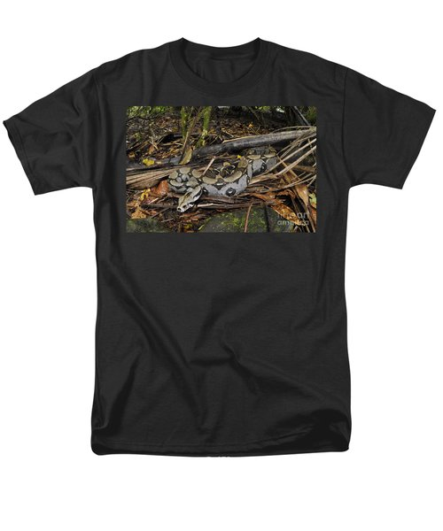 Boa Constrictor Men's T-Shirt  (Regular Fit) by Francesco Tomasinelli