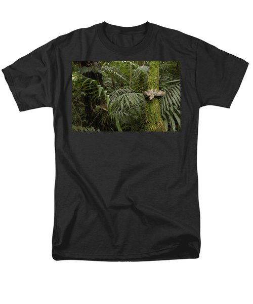Boa Constrictor In The Rainforest Men's T-Shirt  (Regular Fit) by Pete Oxford