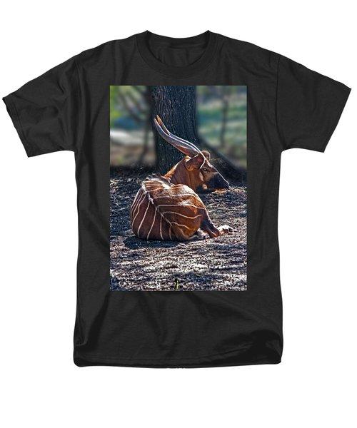 Bongo Men's T-Shirt  (Regular Fit) by Miroslava Jurcik