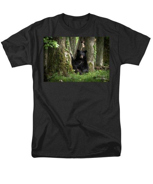 Cades Cove Bear Men's T-Shirt  (Regular Fit)