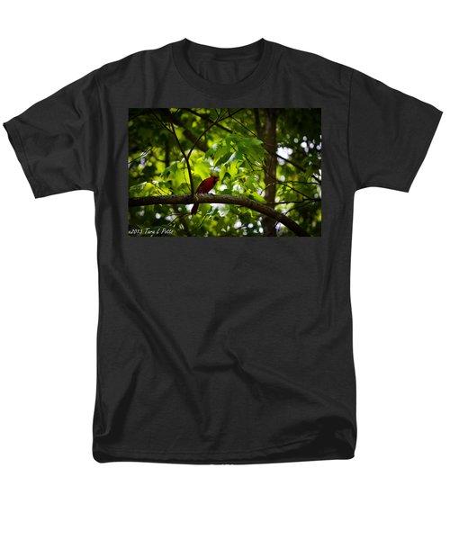 Cardinal In The Trees Men's T-Shirt  (Regular Fit) by Tara Potts