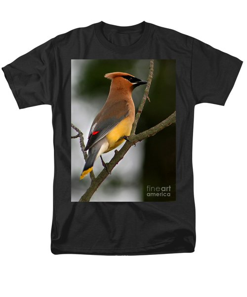 Cedar Wax Wing II Men's T-Shirt  (Regular Fit) by Roger Becker
