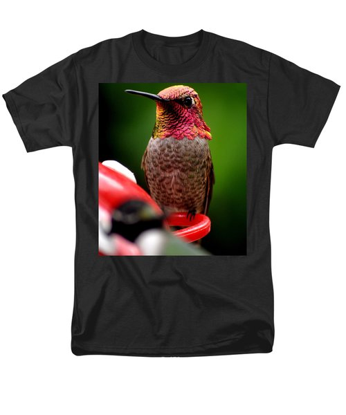 Men's T-Shirt  (Regular Fit) featuring the photograph Colorful Male Anna Hummingbird On Perch by Jay Milo