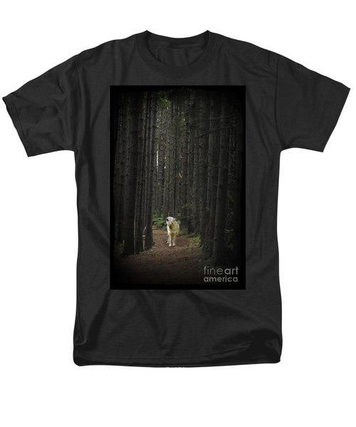 Coyote Howling In Woods Men's T-Shirt  (Regular Fit) by Dan Friend
