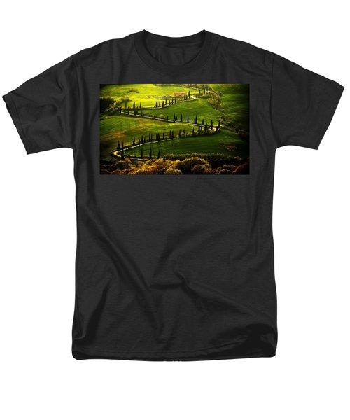 Cypresses Alley Men's T-Shirt  (Regular Fit)