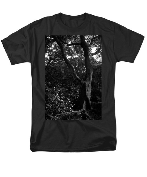 Men's T-Shirt  (Regular Fit) featuring the photograph Elizabethan Gardens Tree In B And W by Greg Reed