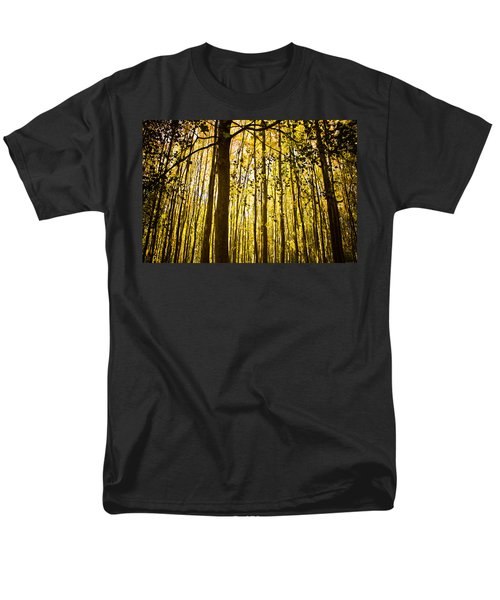 Enchanted Woods Men's T-Shirt  (Regular Fit)