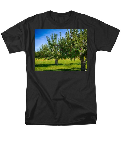 Fruits And Vegetables Men's T-Shirt  (Regular Fit) by Fred Larson