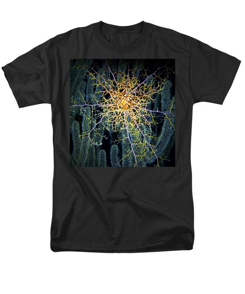 Giant Basket Star At Night Men's T-Shirt  (Regular Fit) by Amy McDaniel