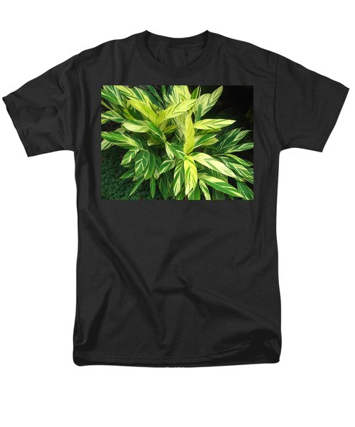 Ginger Lily. Alpinia Zerumbet Men's T-Shirt  (Regular Fit) by Connie Fox