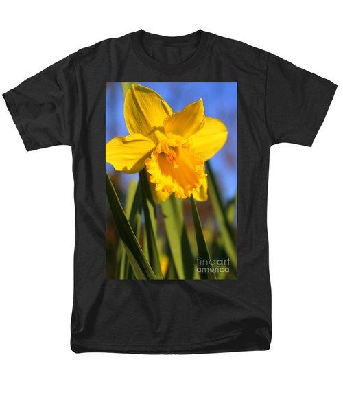 Golden Glory Daffodil Men's T-Shirt  (Regular Fit)