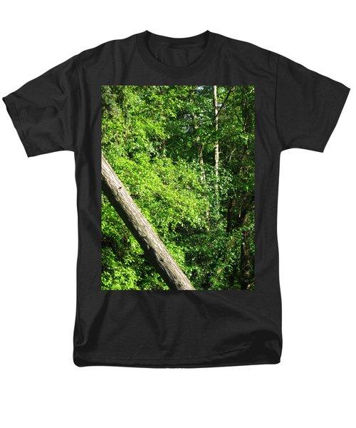 Greenbelt Fall Men's T-Shirt  (Regular Fit) by David Trotter