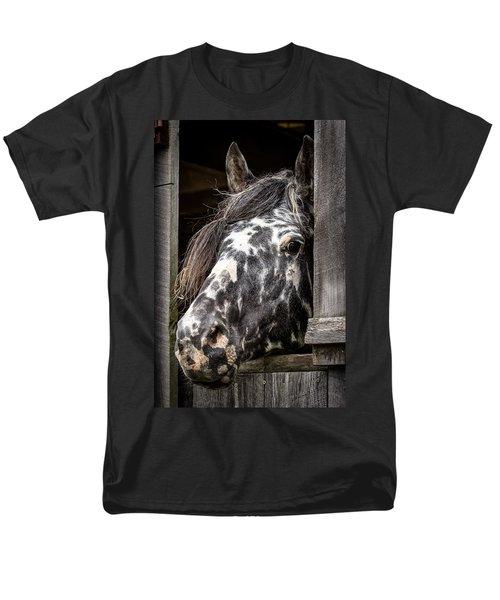Guard Horse-what's The Password? Men's T-Shirt  (Regular Fit)