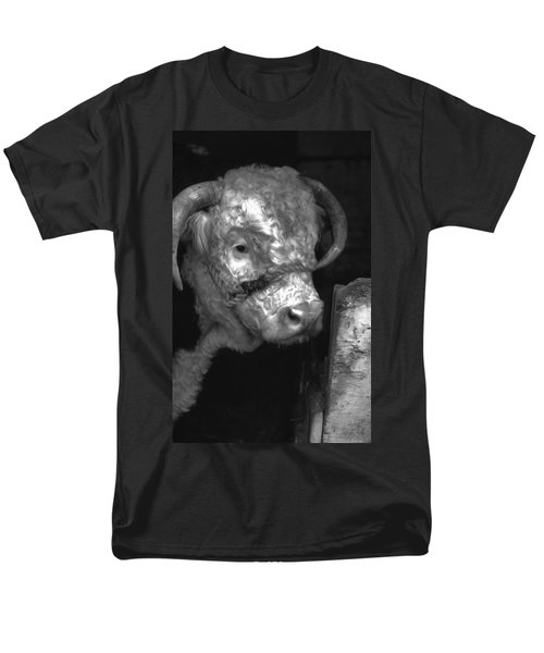 Hereford Bull In Black And White Men's T-Shirt  (Regular Fit) by Cathy Anderson