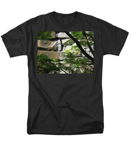Hidden Waterfall Men's T-Shirt  (Regular Fit) by David Trotter