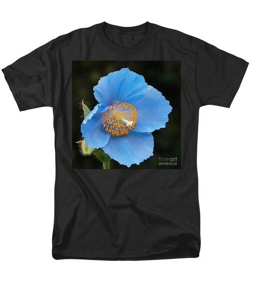 Himalayan Gift -- Meconopsis Poppy Men's T-Shirt  (Regular Fit) by Byron Varvarigos