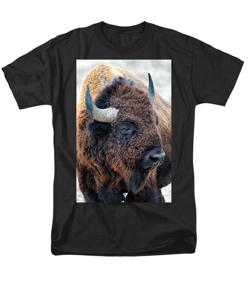 In The Presence Of  Bison - Yes Paint Him Men's T-Shirt  (Regular Fit)