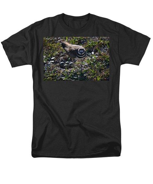 Killdeer Guarding Her Eggs Men's T-Shirt  (Regular Fit) by Tara Potts