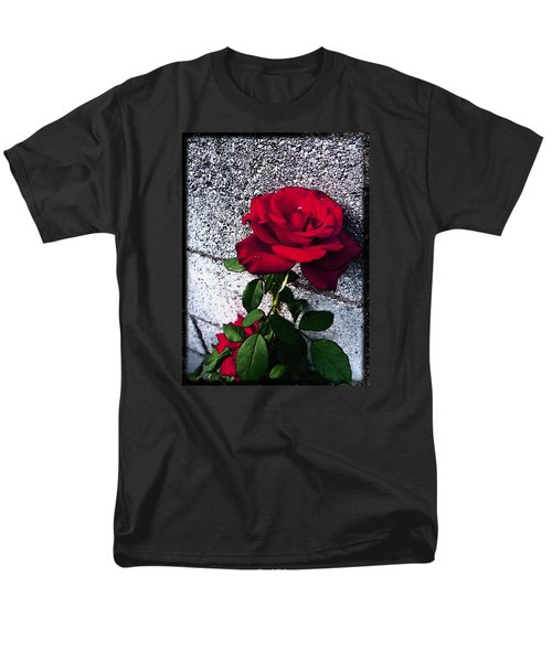 Men's T-Shirt  (Regular Fit) featuring the photograph Late Summer Rose by Shawna Rowe