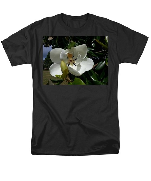 Lemon Magnolia Men's T-Shirt  (Regular Fit)