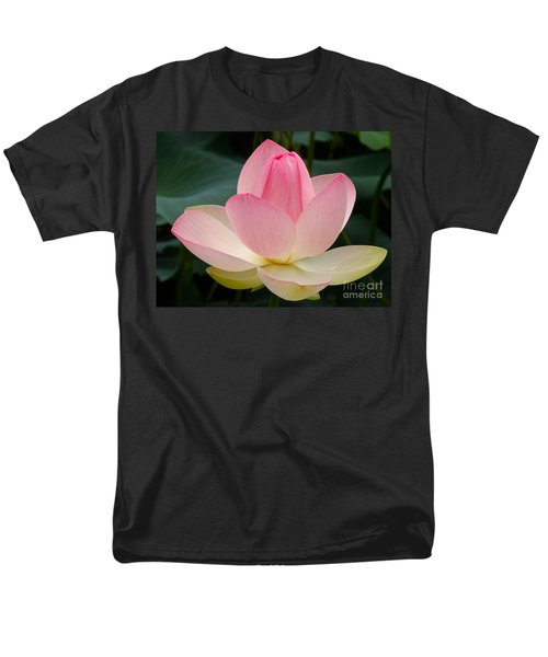Lotus In Bloom Men's T-Shirt  (Regular Fit) by Byron Varvarigos