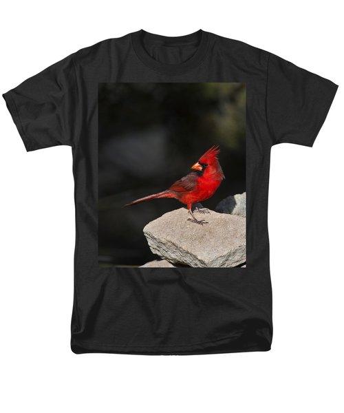Male Cardinal Men's T-Shirt  (Regular Fit) by Gary Langley
