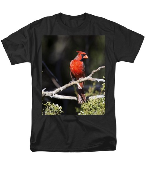 Male Northern Cardinal Men's T-Shirt  (Regular Fit) by Gary Langley