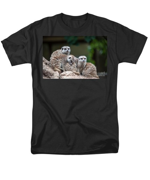 Meerkat Family Men's T-Shirt  (Regular Fit) by Ray Warren