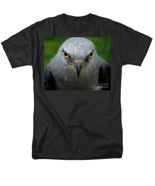 Mississippi Kite Stare Men's T-Shirt  (Regular Fit)
