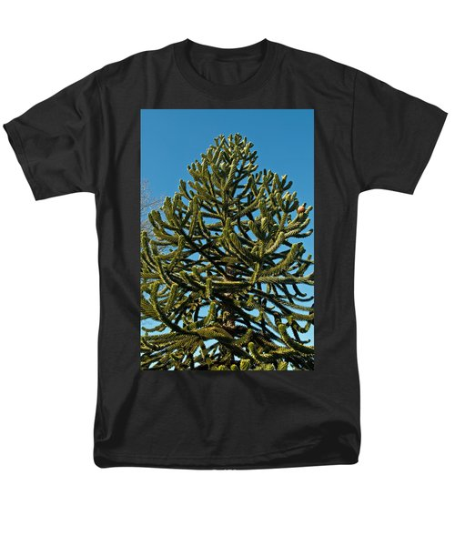 Monkey Puzzle Tree E Men's T-Shirt  (Regular Fit) by Tikvah's Hope