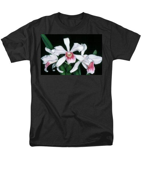 Orchid 10 Men's T-Shirt  (Regular Fit) by Andy Shomock