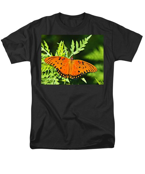 Passion Butterfly Men's T-Shirt  (Regular Fit) by Walter Herrit