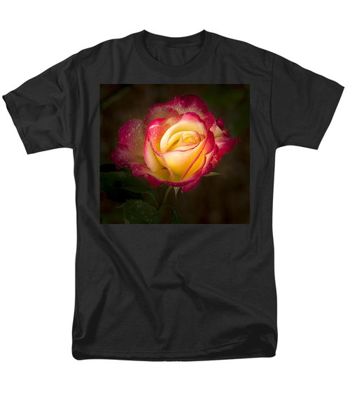 Portrait Of A Double Delight Rose Men's T-Shirt  (Regular Fit) by Jean Noren
