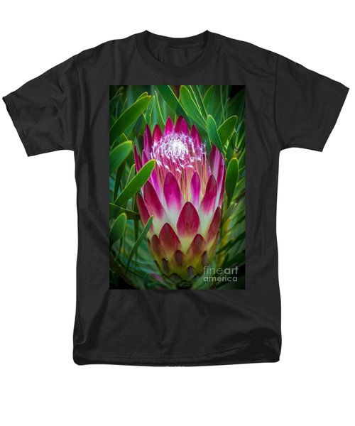 Protea In Pink Men's T-Shirt  (Regular Fit) by Kate Brown