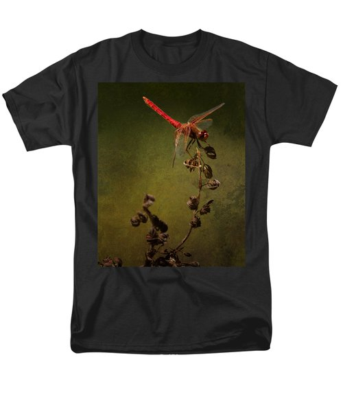 Red Dragonfly On A Dead Plant Men's T-Shirt  (Regular Fit) by Belinda Greb