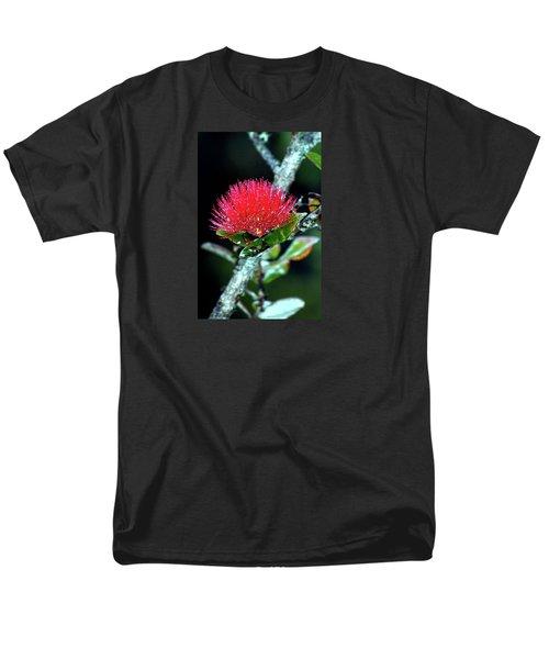 Red Lehua  Kawaiko'olihilihiokalikolehua Men's T-Shirt  (Regular Fit) by Lehua Pekelo-Stearns