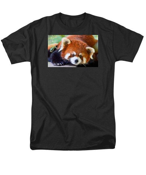 Red Panda Men's T-Shirt  (Regular Fit) by Michael Hubley