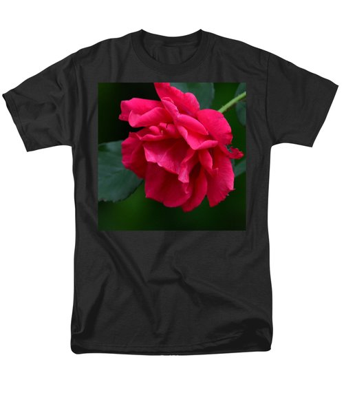 Red Rose 2013 Men's T-Shirt  (Regular Fit) by Maria Urso