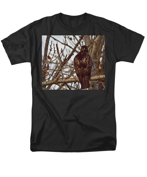 Red Tail Hawk Men's T-Shirt  (Regular Fit) by Brian Williamson