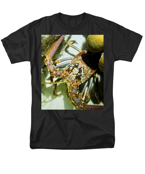 Men's T-Shirt  (Regular Fit) featuring the photograph Reef Lobster Close Up Spotlight by Amy McDaniel