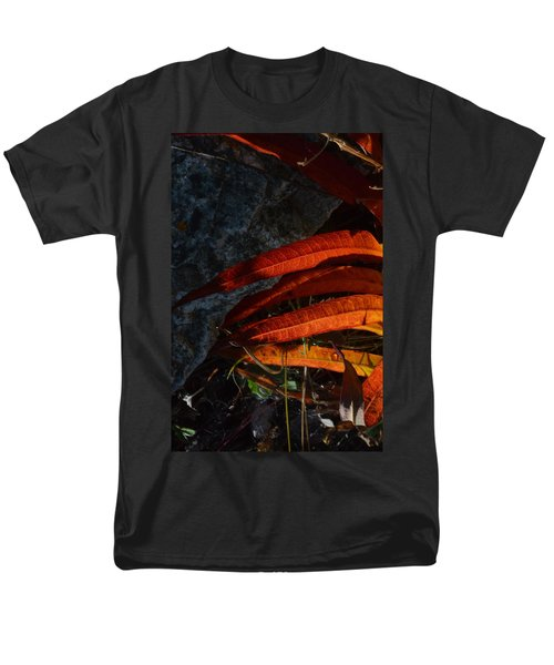 Seasonal Color Theory Men's T-Shirt  (Regular Fit) by Brian Boyle