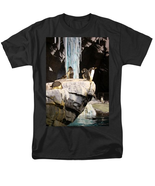 Seaworld Penguins Men's T-Shirt  (Regular Fit) by David Nicholls