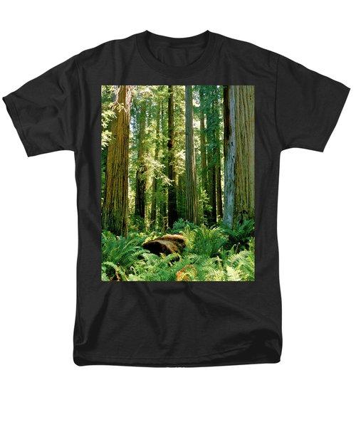 Stout Grove Coastal Redwoods Men's T-Shirt  (Regular Fit) by Ed  Riche