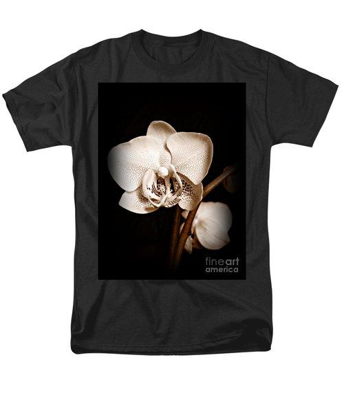 Strength And Beauty Sepia Men's T-Shirt  (Regular Fit)